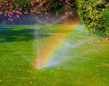 Turf Farm Perth - Sprinklers and rainbows