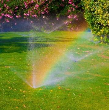 Turf Farm Perth - Sprinklers and rainbows