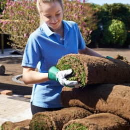 Joondalup Turf Farm - rolled quality green grass supplier